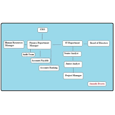the need for an organizational chart for risk managementhow to