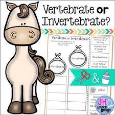 free printable worksheets vertebrates invertebrates vertebrates and invertebrates worksheet teaching resources