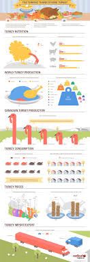 20 fascinating infographics on thanksgiving 2013 infographics