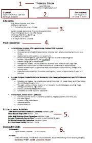 human development resume sample now what review 30 additional with