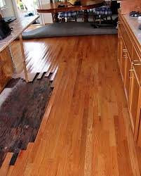hardwood floor water damage repair in ta fl