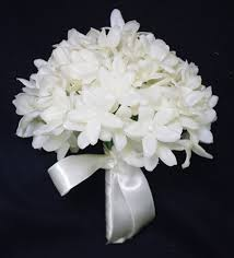 stephanotis flower touch white stephanotis with pearls