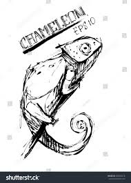 chameleon clipart sketch pencil and in color chameleon clipart