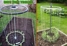 Ideas Garden Diy Bike Trellis Home Design Garden Architecture