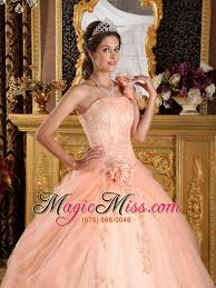 light pink ball gown one shoulder floor length appliques tulle