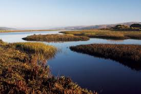 Tomales Bay Map Tomales Bay Revival The Ripple Effects Of Restoration Bay Nature