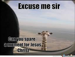 Meme Giraffe - giraffe by theycallmedan meme center