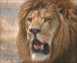 lions for sale eric wilson wildlife artist lion paintings