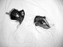 through the eyes of john baselmans step by step mother teresa