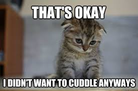 Funny Kitten Meme - oh noooo my heart going to cuddle with my baby boy stat 12 very