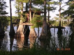 Homes And Decor Rustic Lake House Rustic Tree House On Caddo Lake Rustic Homes