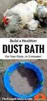 keep your hens healthy with a custom dust bath coops farming
