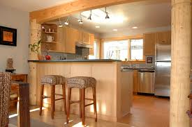Bamboo Kitchen Cabinets Modern Bamboo Kitchen Cabinets Tags Remarkable Bamboo Kitchen