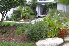 Florida Backyard Landscaping Ideas South Florida Landscaping Ideas U2014 Jbeedesigns Outdoor Palm Trees