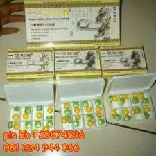 jual obat klg pills asli di surabaya 081234944066 myxl forum beta