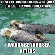 Sea Otter Meme - google image result for http cdn memegenerator net instances 400x