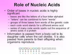 chemical basis of life organic compounds ppt video online download