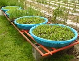 Pool Garden Ideas 269 Best Garden Images On Pinterest Gardening Kiddie Pool And