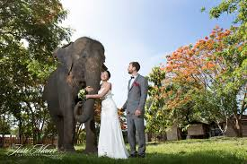 photographers in houston home houston wedding photographer marri photography