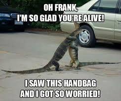 Alligator Memes - ego memes when alligators reunite egorich