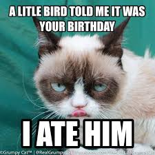 Grumpy Cat Meme Happy Birthday - grumpy cat clipart birthday saying pencil and in color grumpy cat