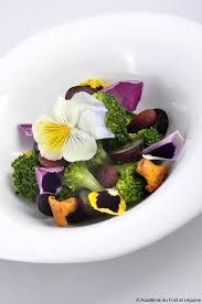 etoile de badiane cuisine fresh etoile de badiane cuisine suggestion iqdiplom com