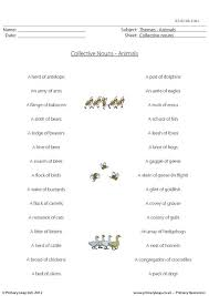 primaryleap co uk collective nouns animals worksheet
