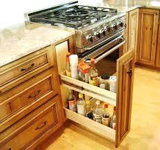 Undercounter Bathroom Storage Kitchen Cabinet Storage Ideas Counter Storage Racks