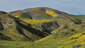 California Scenery images Wilderness bill would protect california scenery habitat and jpg