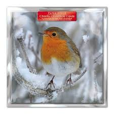 cheap christmas cards for charity find christmas cards for