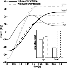 Optimal Control Of Natural Eye Head Movements Minimizes The Impact