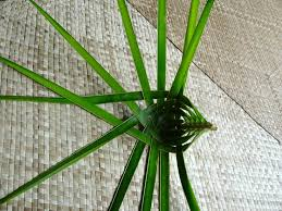 palm fronds for palm sunday 265 best palm frond crafts images on closure weave