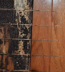 Hardwood Floor Gun Removing Glued Down Hardwood Flooring Lueder Family Blog