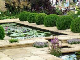 images about backyard fish ponds gardens newest water garden house