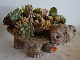 turtle pot hypertufa succulent planter tutorial pdf 4 99 via