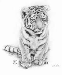 best 25 tiger tattoo ideas on pinterest white tiger tattoo
