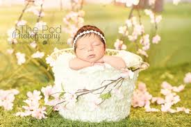 baby photography los angeles apple blossom baby photography set best photographer los angeles