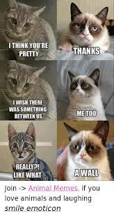 Best Animal Memes - 25 best memes about animal memes animal memes