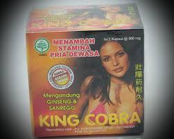 king cobra kuat pria toko herbal 07