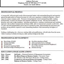 Example Summary Resume by Resume Personal Statement Examples Cv Resume Ideas