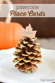 place card settings diy fall pinecones crafts unleashed