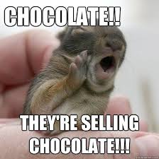 Chocolate Bunny Meme - what are they selling chocolate theyre selling chocolate