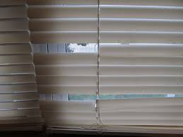replacement blinds