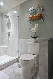 Toilet Paper Holder For Small Bathroom Tile Modern Design Bathroom Contemporary With Half Wall Clear