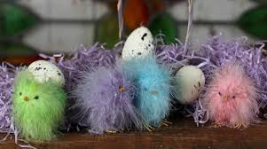 fuzzy easter assorted pastel fuzzy feather easter birds butterflies
