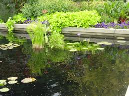 diy backyard landscaping design ideas u2014 home landscapings