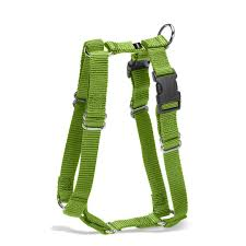 Comfortable Strap On Harness Training Tool Choices The Harness Or The Head Collar Petsafe