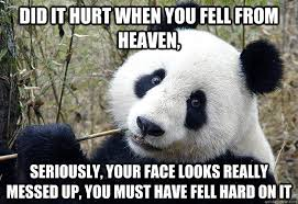 Pick Up Line Panda Meme - pick up line panda memes quickmeme