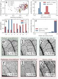 topological phenotypes constitute a new dimension in the