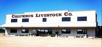 Texas Sale Barn Home Page